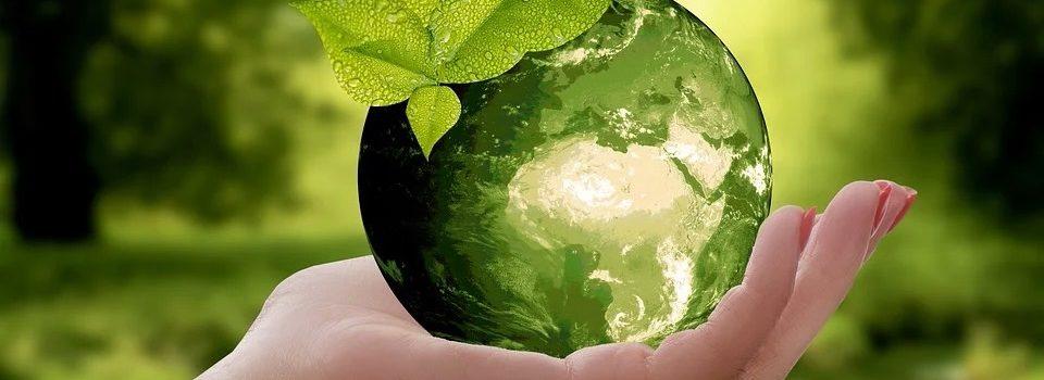 Nachhaltigkeit – auf die Sichtweise kommt es an